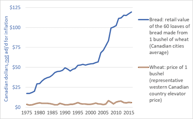 Graph of Canadian retail store bread price and country elevator wheat price, 1975-2016
